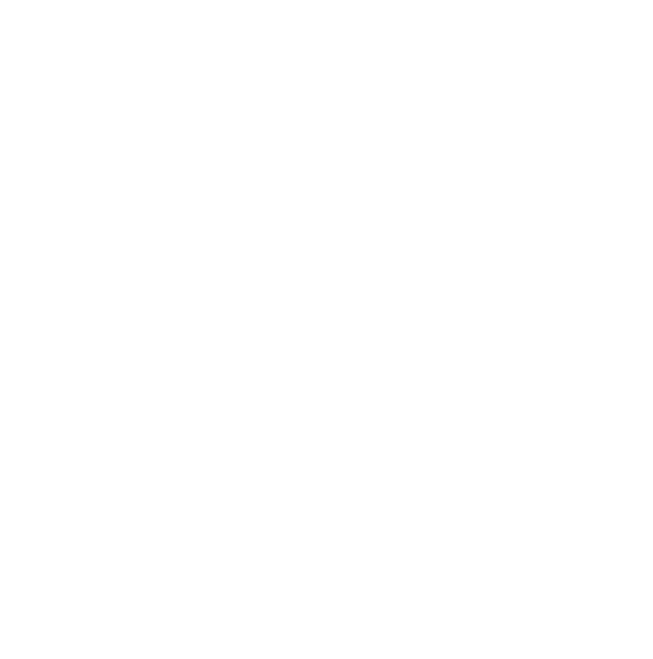 Trip To The Moon